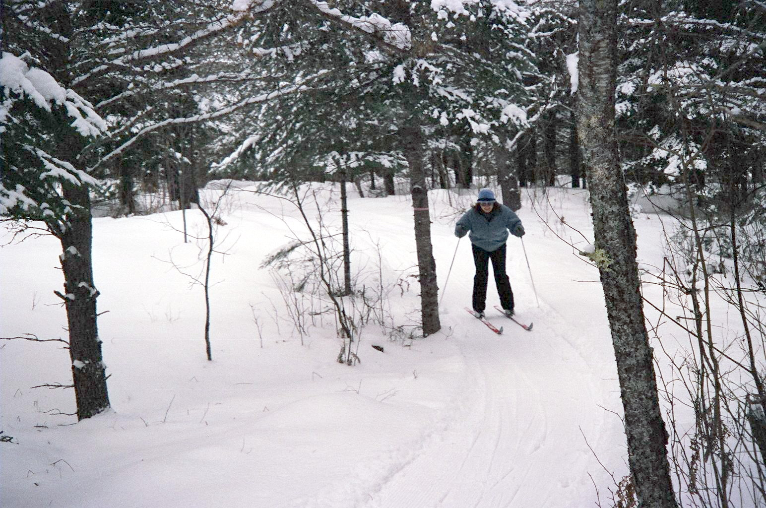 Cross Country Skiing Our Trail Has Something For Everyone